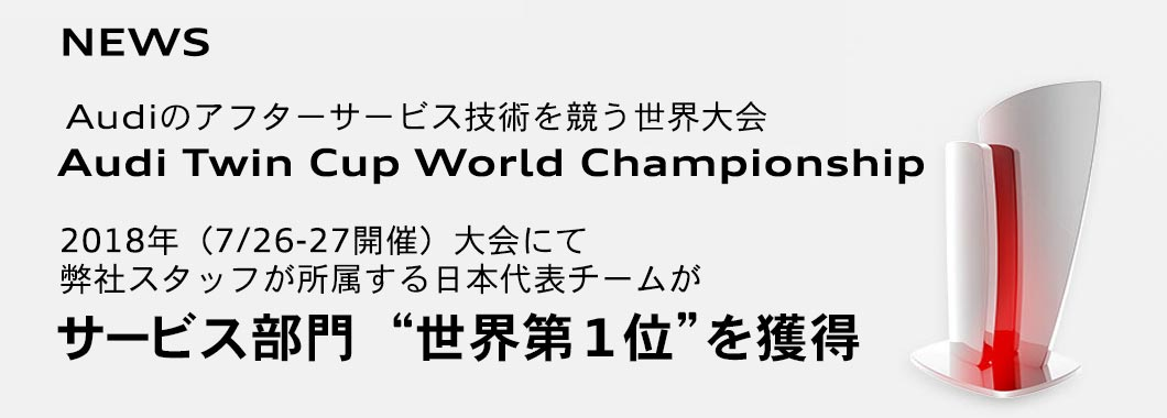 Audi Twin Cup World Championship