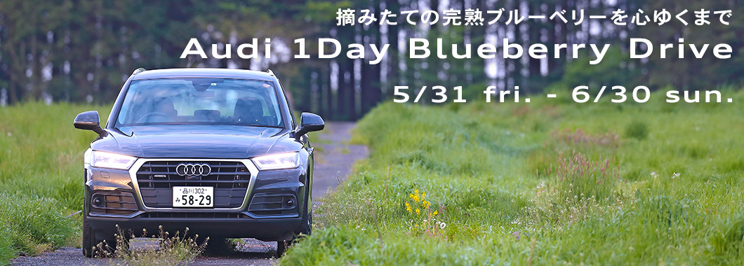 Audi 1Day Blueberry Drive 5/31 fri. - 6/30 sun.