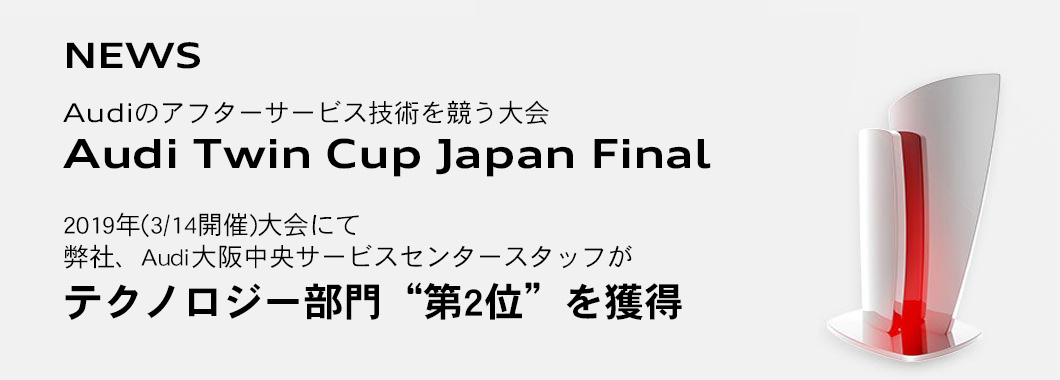 Audi Twin Cup Japan Final
