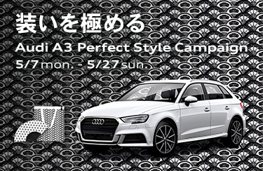a3_perfect_style_campaign