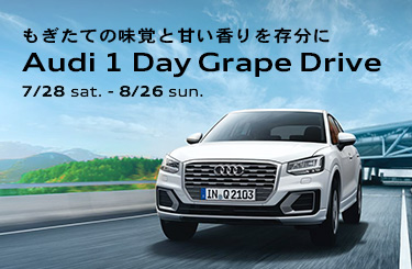 Audi 1 Day Grape Drive