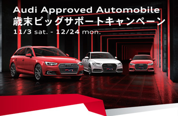 Audi Approved Automobile Early Winter Driving Festa